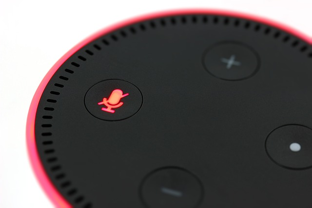 voice search smart speaker