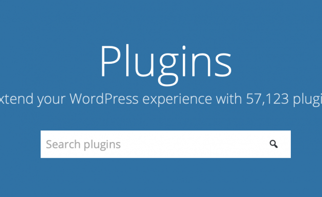 Leave your WordPress plugin updates to us, not chance